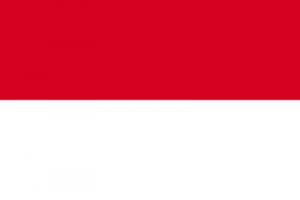 Bendera nasional indonesia