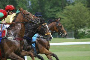 olahraga berkuda