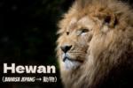 Nama-nama Hewan/Binatang dalam Bahasa Jepang